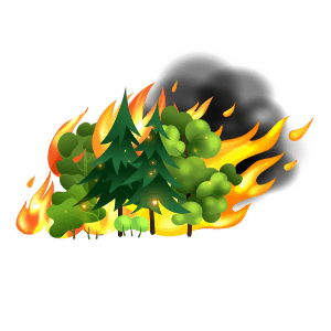 extreme weather vocabulary - Wild Fire