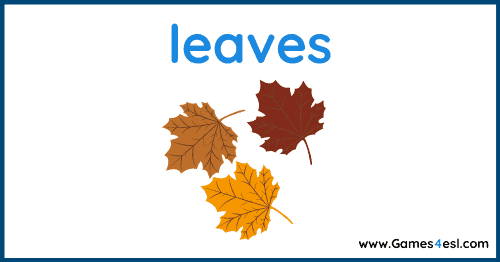Fall Vocabulary - leaves