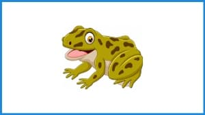 English Idiom Frog In Your Throat